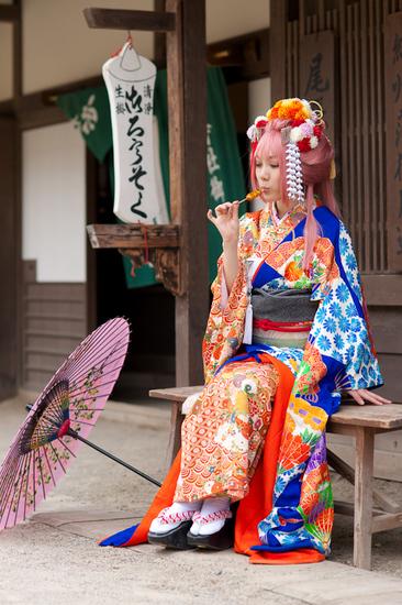 まだ蕾なり花娘京都撮影レポ